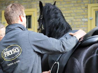 Zadelpassen bij & met Friese Paarden