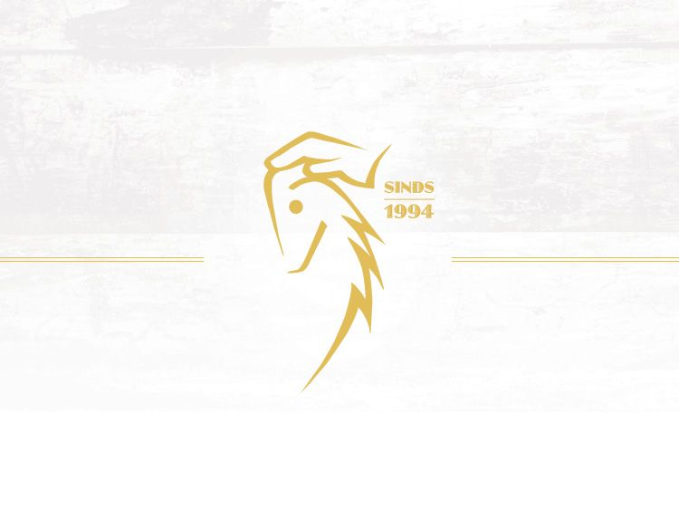 LeMieux Zadeldek ProSport Dressuur Suede - White
